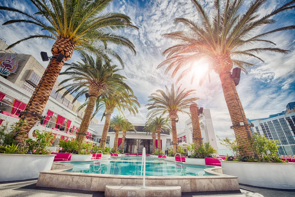 Looking to enjoy to Vegas for cheap? Click through for the ultimate budget guide to the best food, hotels, and nightlife. You don't have to be a millionaire to enjoy Vegas just like one! - www.theballeronabudget.com