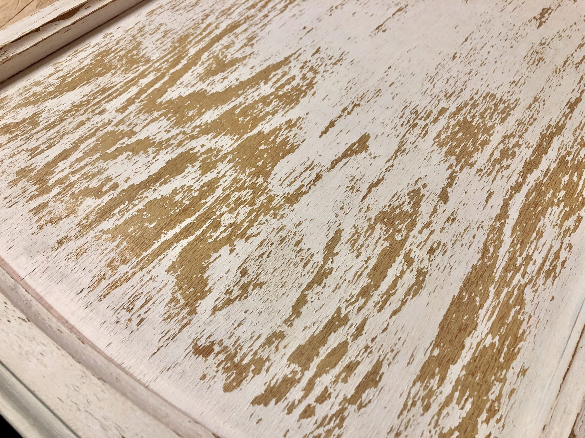 Cabinet door left outside with peeling milk paint